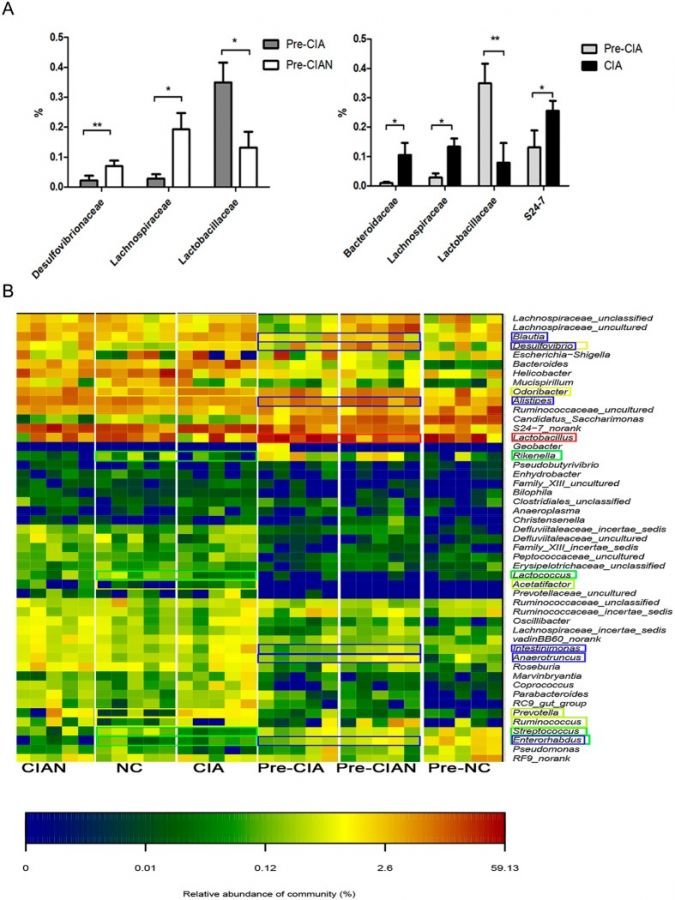 Charts comparing microbiome of CIA-susceptible and CIA-resistant mice