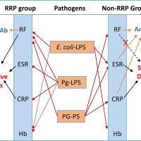 Different Bacterial Pathogens May Affect Serological Disease Markers in RRP and non-RRP Rheumatoid Arthritis